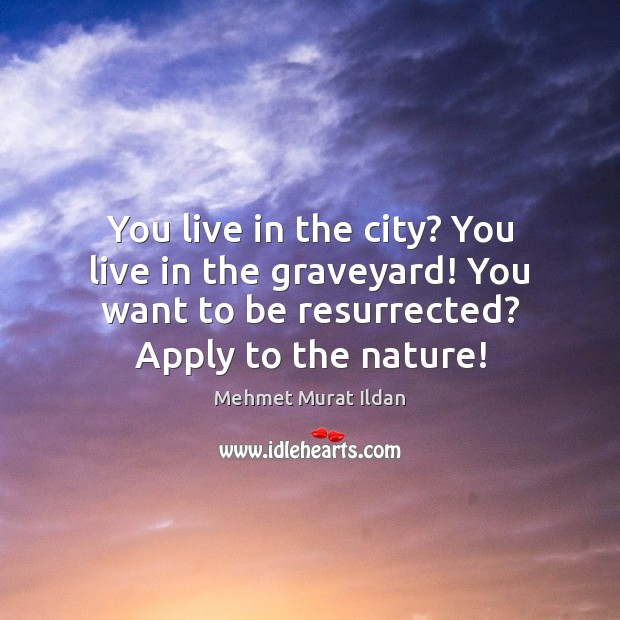 Image, You live in the city? You live in the graveyard! You want
