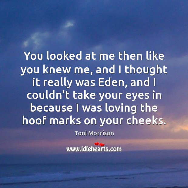 You looked at me then like you knew me, and I thought Toni Morrison Picture Quote