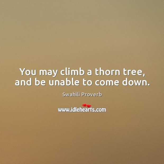 Image, You may climb a thorn tree, and be unable to come down.