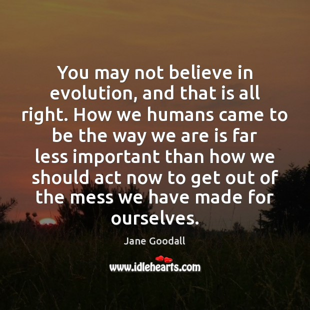 You may not believe in evolution, and that is all right. How Jane Goodall Picture Quote