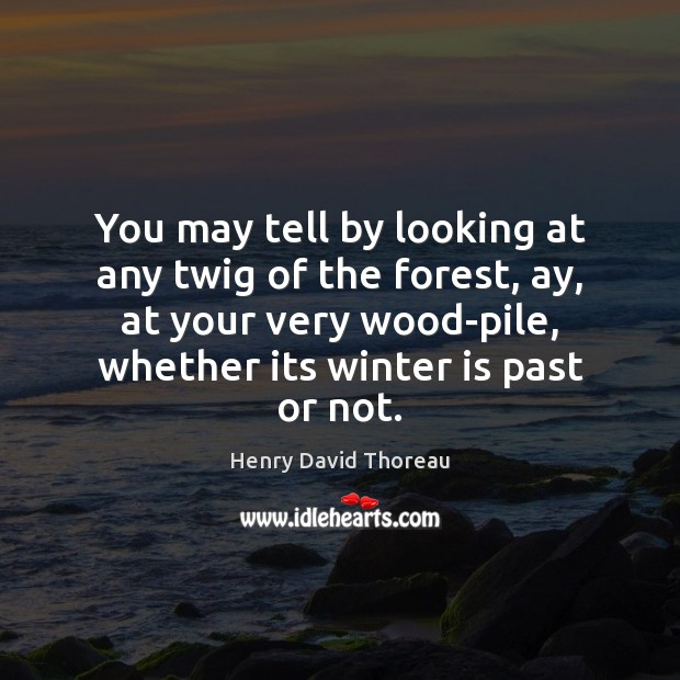 Image, You may tell by looking at any twig of the forest, ay,