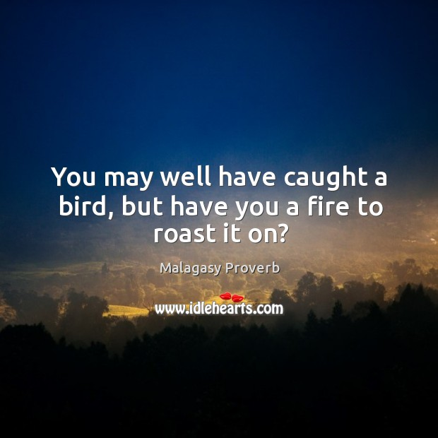 You may well have caught a bird, but have you a fire to roast it on? Malagasy Proverbs Image