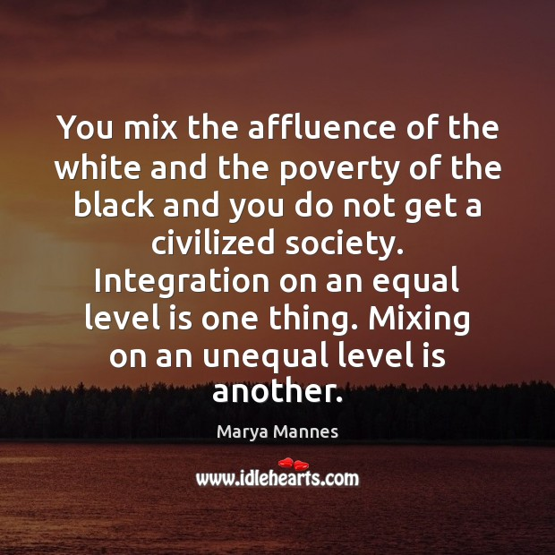 You mix the affluence of the white and the poverty of the Marya Mannes Picture Quote