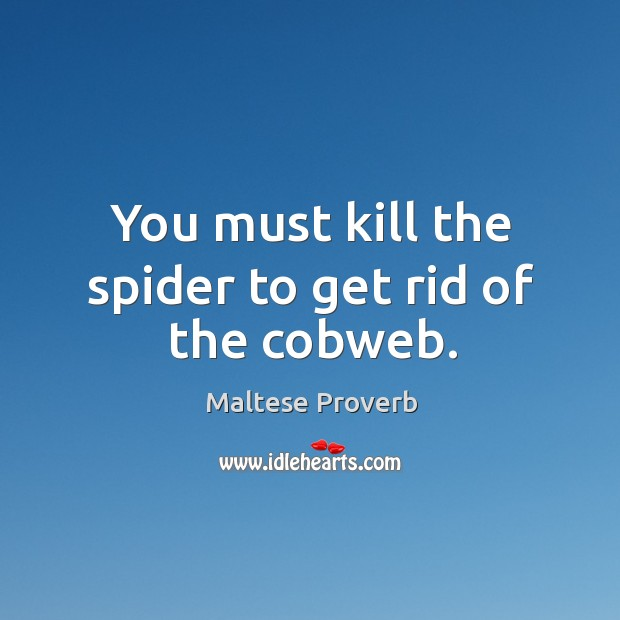 You must kill the spider to get rid of the cobweb. Maltese Proverbs Image