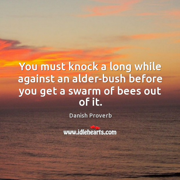 You must knock a long while against an alder-bush before you get a swarm of bees out of it. Danish Proverbs Image