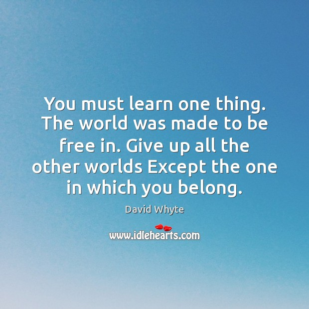 You must learn one thing. The world was made to be free Image