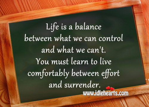 Life Is A Balance Between What We Can Control And What We Can't.