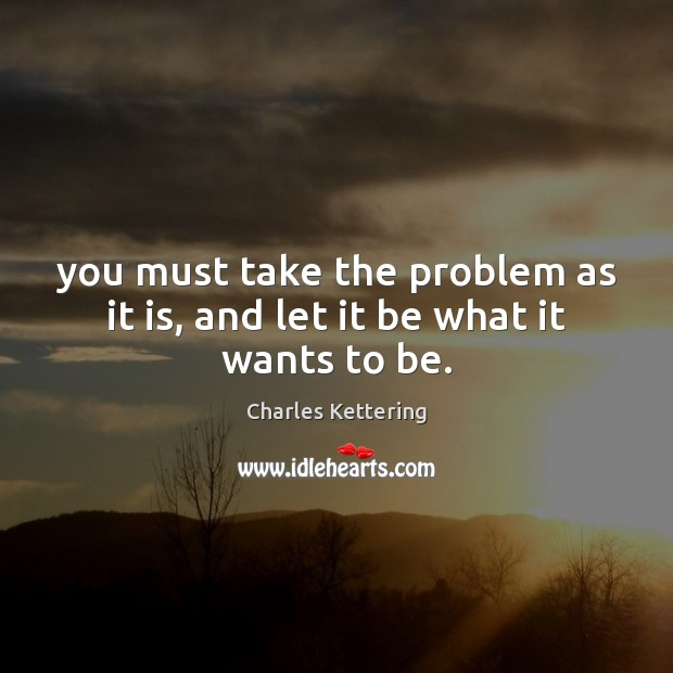 You must take the problem as it is, and let it be what it wants to be. Image
