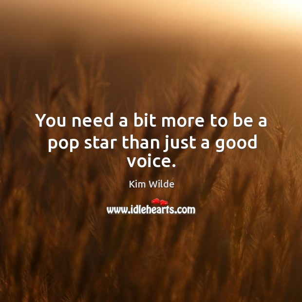 You need a bit more to be a pop star than just a good voice. Kim Wilde Picture Quote