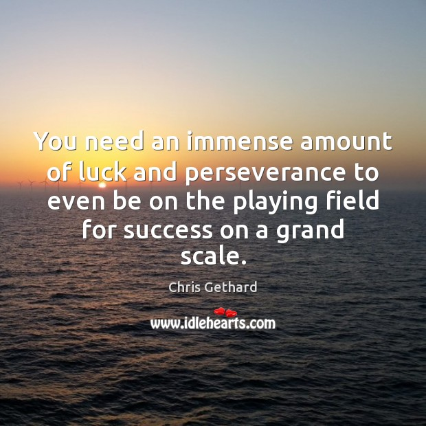 Chris Gethard Picture Quote image saying: You need an immense amount of luck and perseverance to even be