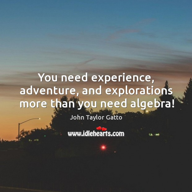 You need experience, adventure, and explorations more than you need algebra! John Taylor Gatto Picture Quote