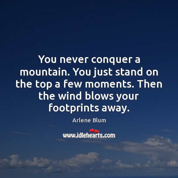 Image, You never conquer a mountain. You just stand on the top a