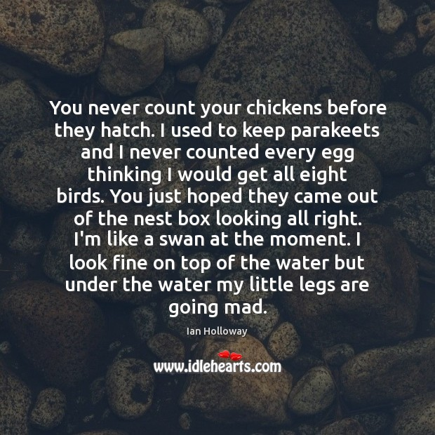 You never count your chickens before they hatch. I used to keep Ian Holloway Picture Quote