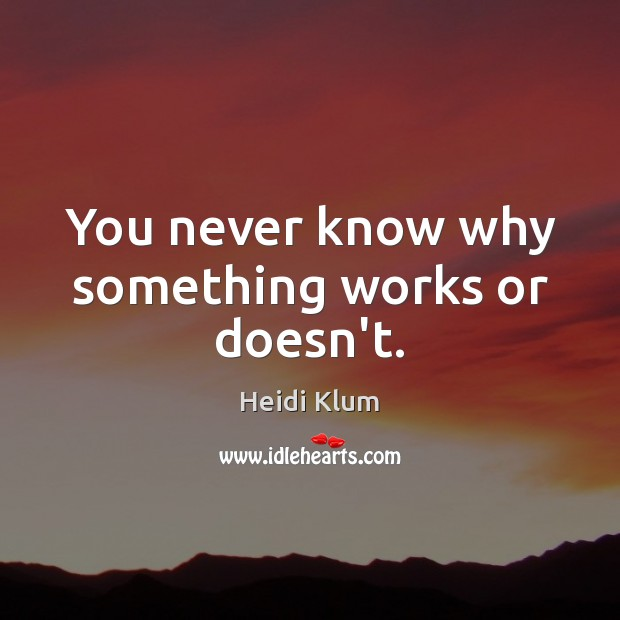 You never know why something works or doesn't. Heidi Klum Picture Quote