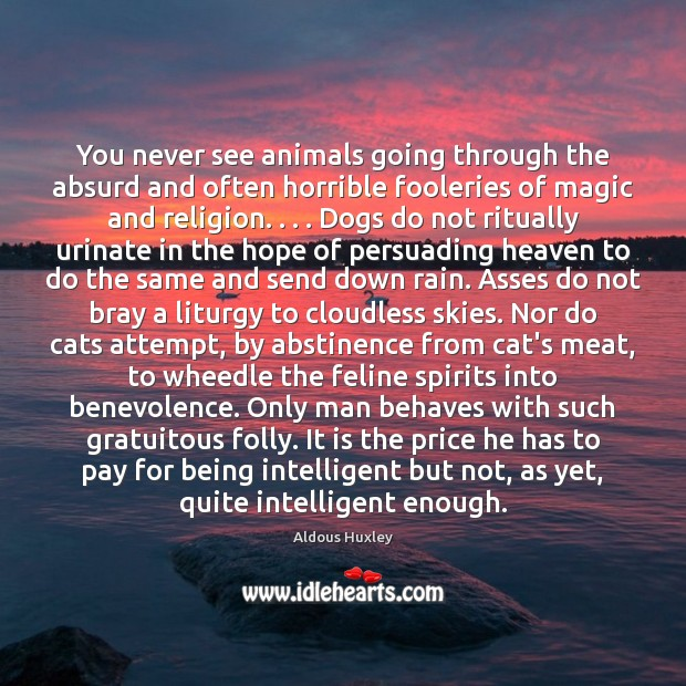 Image about You never see animals going through the absurd and often horrible fooleries