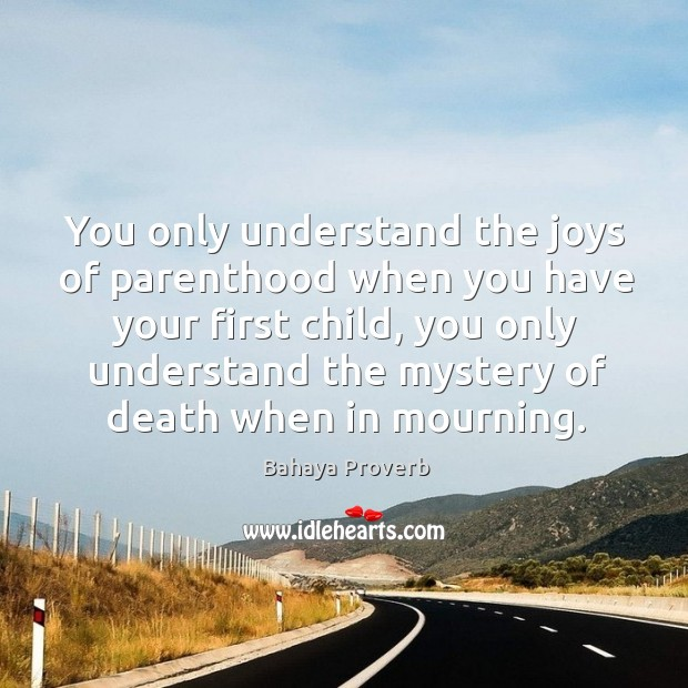 You only understand the joys of parenthood when you have your first child. Bahaya Proverbs Image