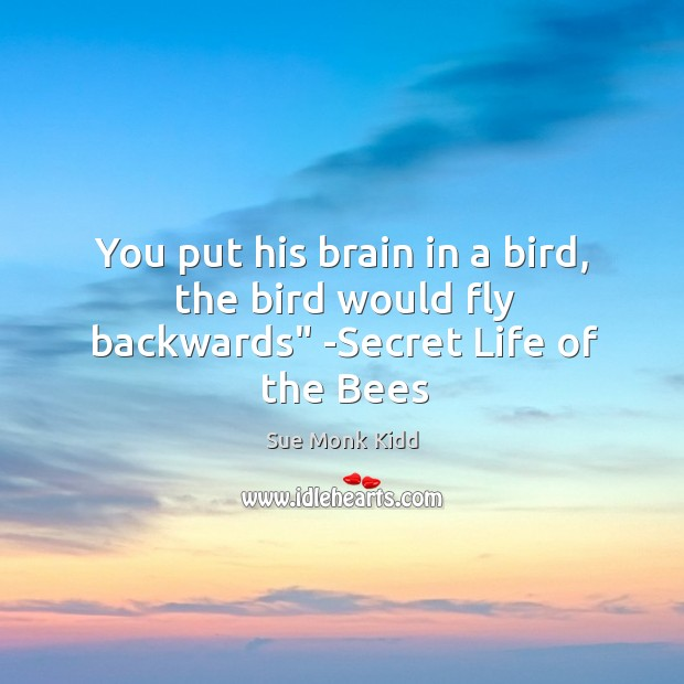"""Image, You put his brain in a bird, the bird would fly backwards"""" -Secret Life of the Bees"""