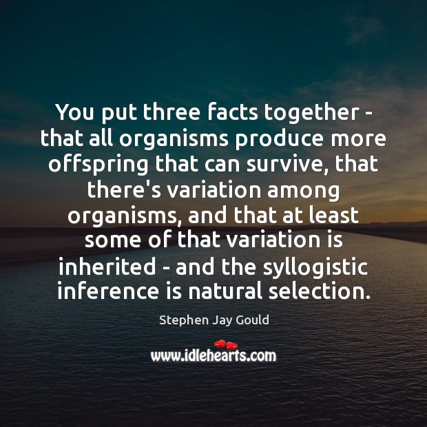 You put three facts together – that all organisms produce more offspring Stephen Jay Gould Picture Quote