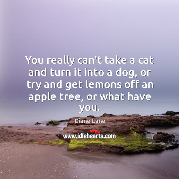 You really can't take a cat and turn it into a dog, Image