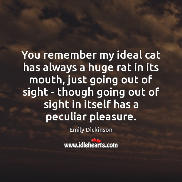 You remember my ideal cat has always a huge rat in its Emily Dickinson Picture Quote
