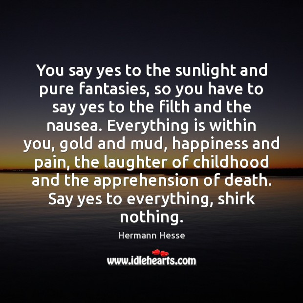 You say yes to the sunlight and pure fantasies, so you have Hermann Hesse Picture Quote