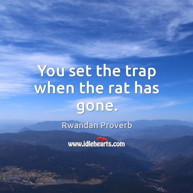 You set the trap when the rat has gone. Rwandan Proverbs Image