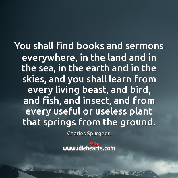 You shall find books and sermons everywhere, in the land and in Image