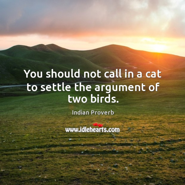You should not call in a cat to settle the argument of two birds. Indian Proverbs Image
