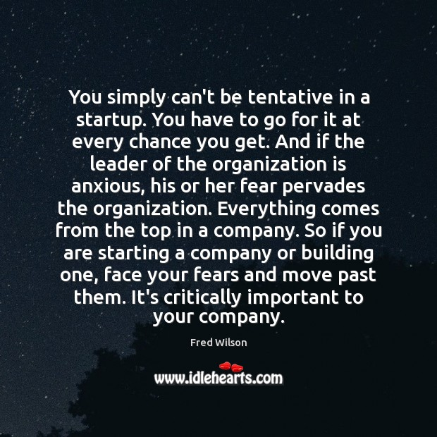 You simply can't be tentative in a startup. You have to go Fred Wilson Picture Quote