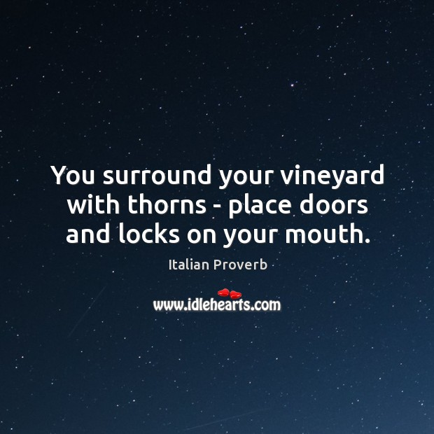 Image, You surround your vineyard with thorns – place doors and locks on your mouth.