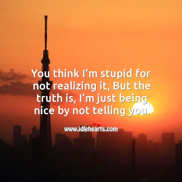 You think I'm stupid for not realizing it, but the truth is, I'm just being nice by not telling you. Image
