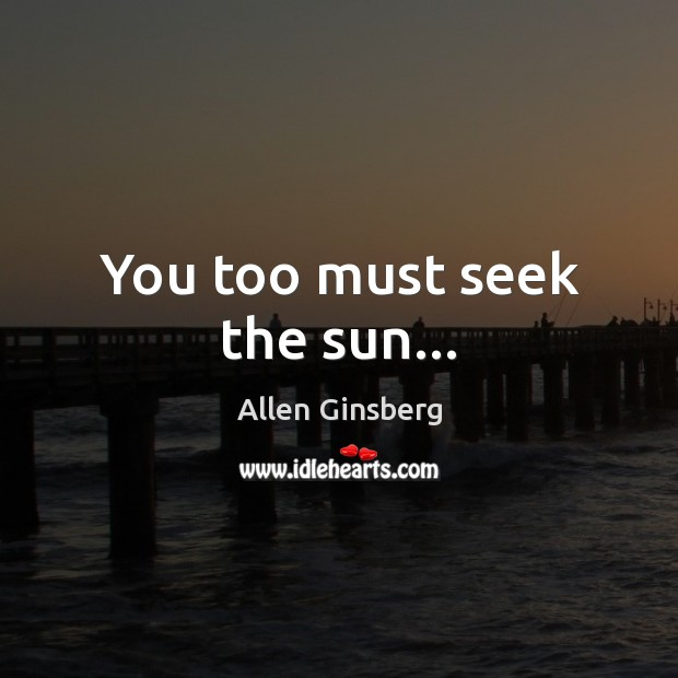 Image, You too must seek the sun…