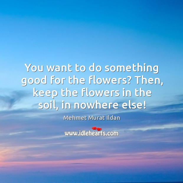 Image, You want to do something good for the flowers? Then, keep the