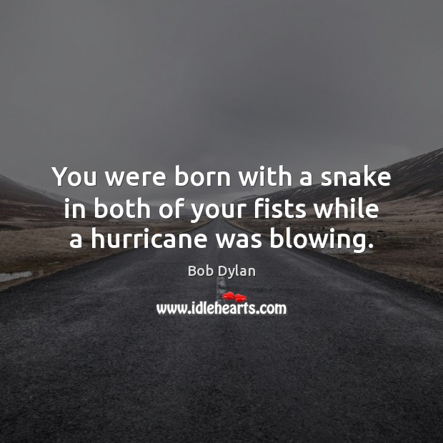 You were born with a snake in both of your fists while a hurricane was blowing. Image