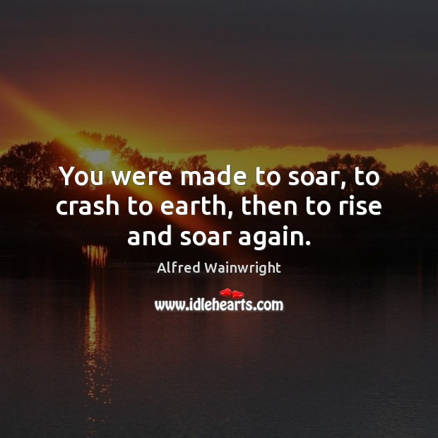 Image, You were made to soar, to crash to earth, then to rise and soar again.
