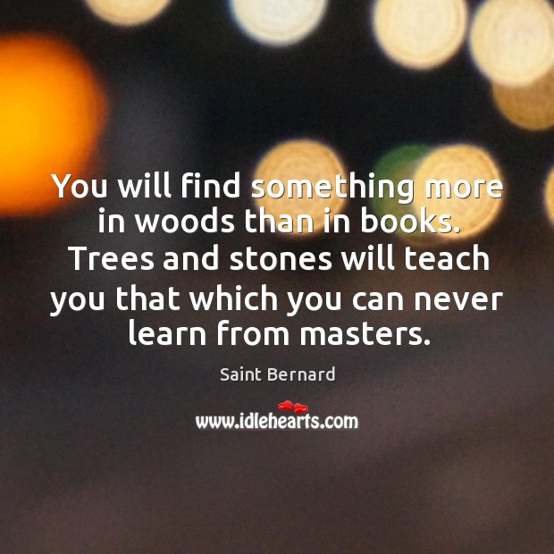 Image, You will find something more in woods than in books. Trees and stones will teach you that.