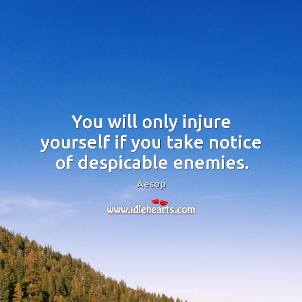 Image, You will only injure yourself if you take notice of despicable enemies.