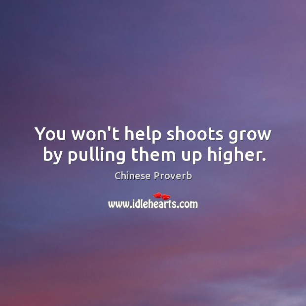 Image, You won't help shoots grow by pulling them up higher.