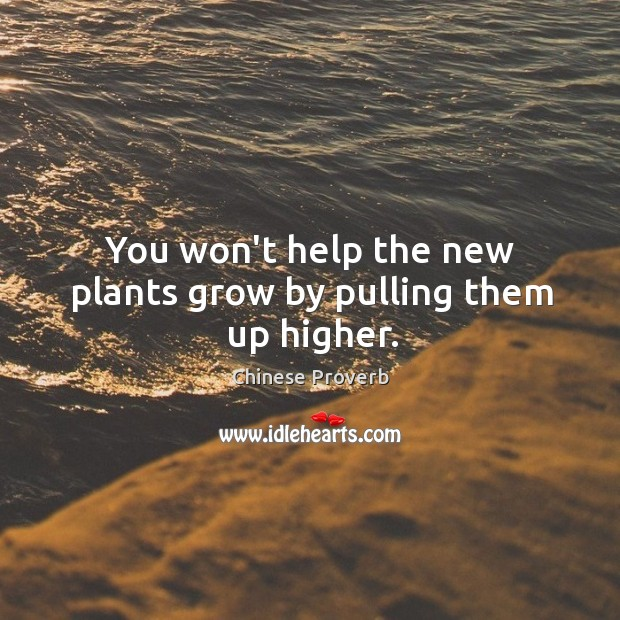 Image, You won't help the new plants grow by pulling them up higher.