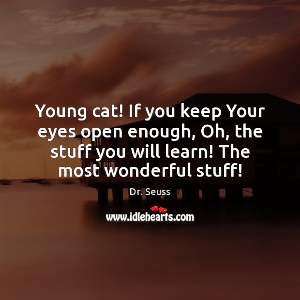 Young cat! If you keep Your eyes open enough, Oh, the stuff Dr. Seuss Picture Quote