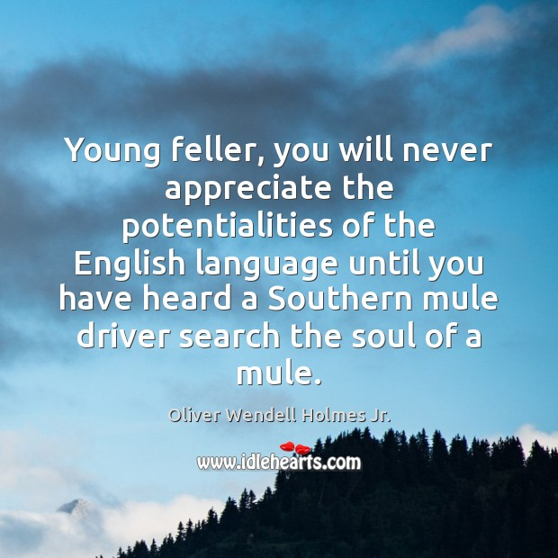 Young feller, you will never appreciate the potentialities of the English language Oliver Wendell Holmes Jr. Picture Quote