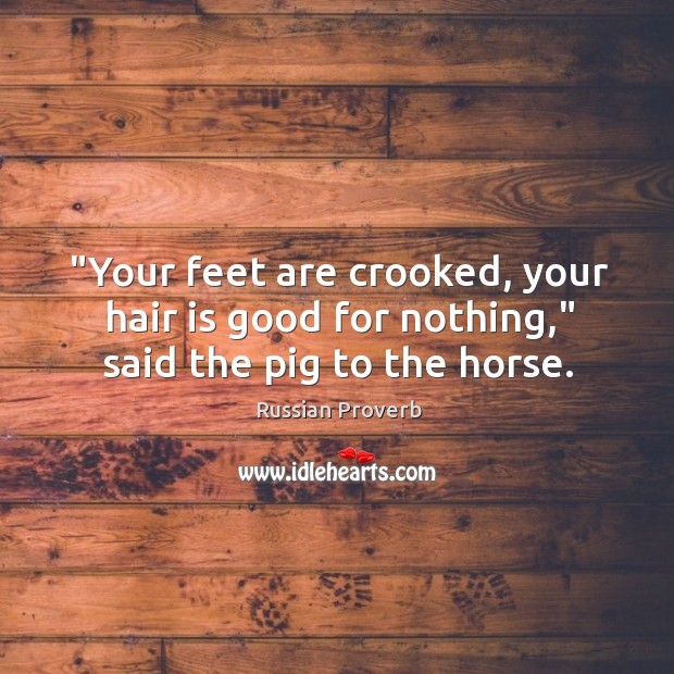 """""""your feet are crooked, your hair is good for nothing,"""" said the pig to the horse. Russian Proverbs Image"""