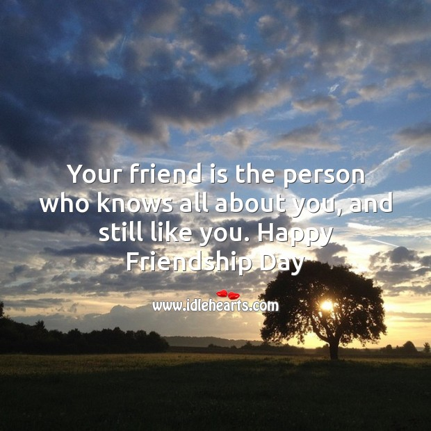 Image, Your friend is the person who knows all about you, and still like you.