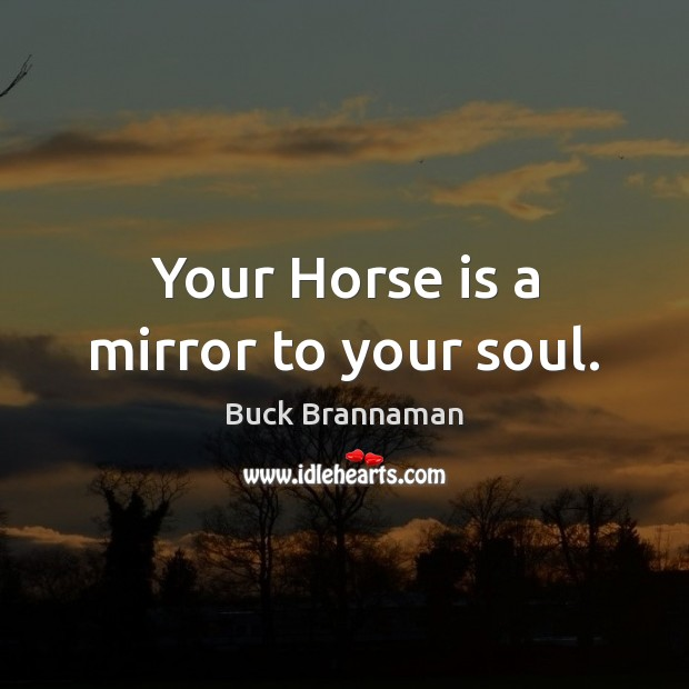 Image, Your Horse is a mirror to your soul.