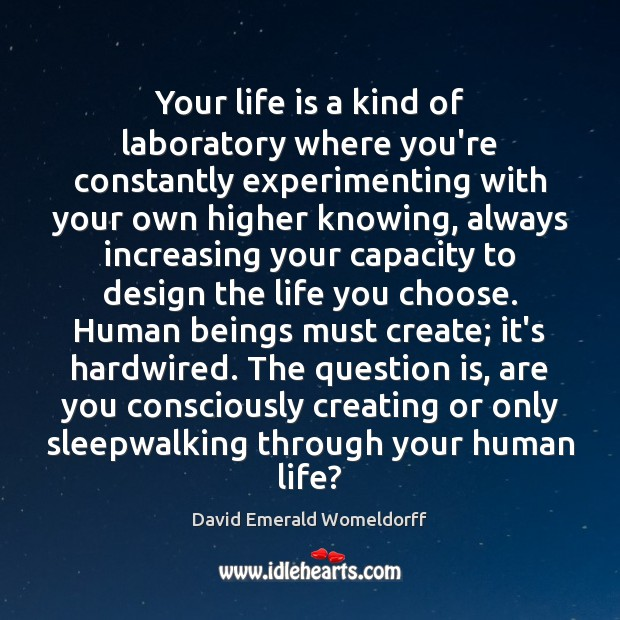 Your life is a kind of laboratory where you're constantly experimenting with David Emerald Womeldorff Picture Quote