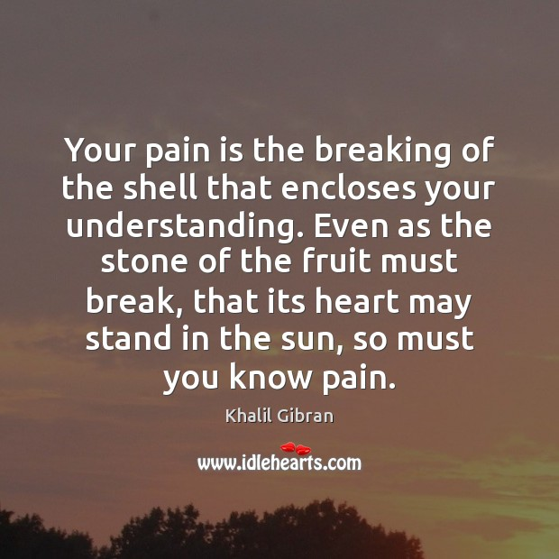 Image, Your pain is the breaking of the shell that encloses your understanding.