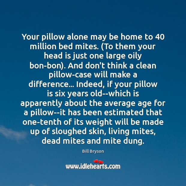 Your pillow alone may be home to 40 million bed mites. (To them Image