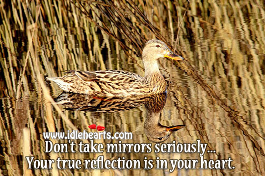 Don't Take Mirrors Seriously