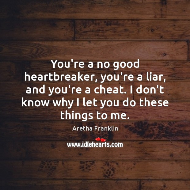 You're a no good heartbreaker, you're a liar, and you're a cheat. Image