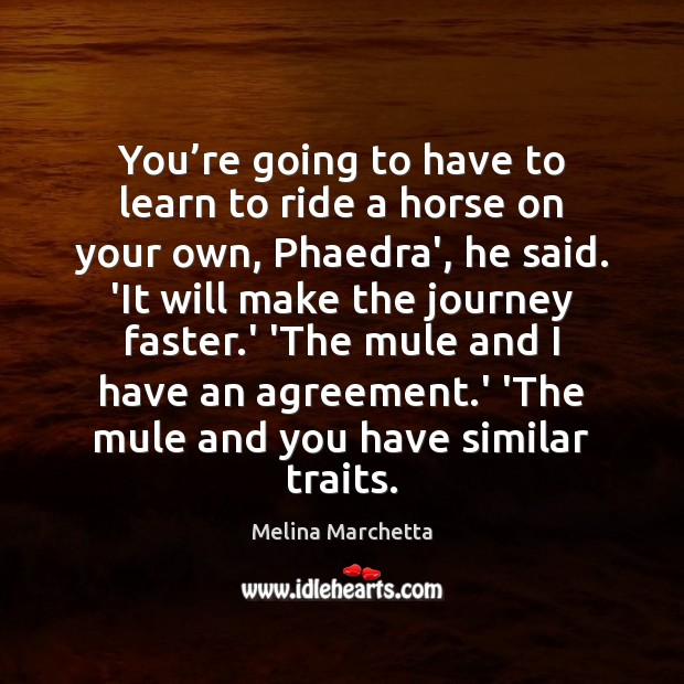 You're going to have to learn to ride a horse on Melina Marchetta Picture Quote